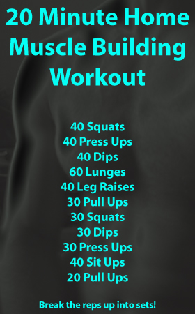 body part workouts  free simple workouts  advice