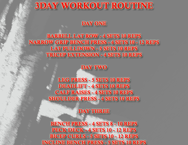 3 day workout routine for beginners.