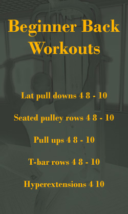 Beginner Back Workouts