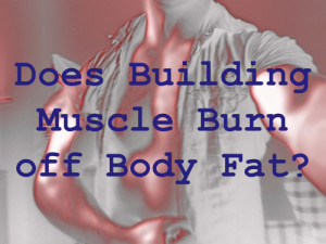 Does muscle burn body fat