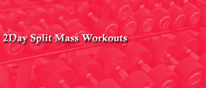 2day split mass workouts