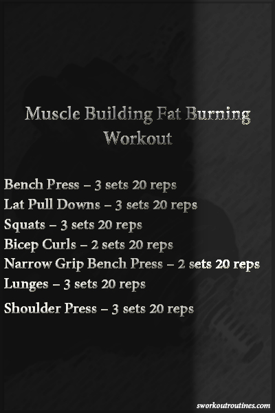 Basic Muscle Building Fat Burning Workout.